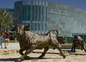 USF's metal bull statues in front of the Marshall Center on campus