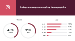 Graphs depicting the differences in user demographics for Instagram