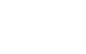 The WordPress logo, one of the most used website back ends