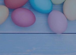 easter eggs on wooden table for blog with blue tint