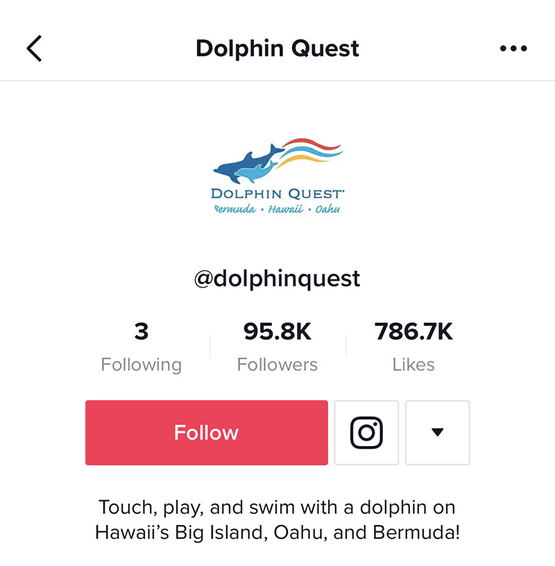 @DolphinQuest have inaccurate social media image sizing on TikTok so their profile picture gets cut off.